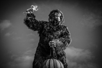 Hullywood Icons numbers 78 and 79 Film: King Kong Location: Hull Daily Mail Office.